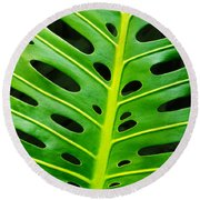 Monstera Leaf Round Beach Towel by Carlos Caetano