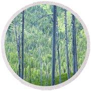 Montana Trees Round Beach Towel