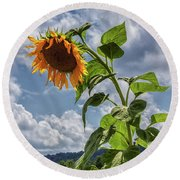 Monticello Sunflower Round Beach Towel