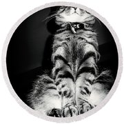 Monty Our Precious Cat Round Beach Towel