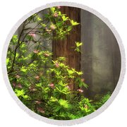 Moody Forest  Round Beach Towel