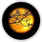 Moon In The Trees Round Beach Towel