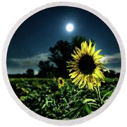Round Beach Towel featuring the photograph Moonlighting Sunflower by Everet Regal
