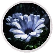 Round Beach Towel featuring the photograph Moonlit Petals. From The Beautiful by Mr Photojimsf