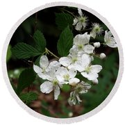 Round Beach Towel featuring the photograph More Blackberry Flowers by Cathy Harper