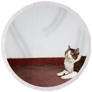 Round Beach Towel featuring the photograph Morfeas by Laura Melis