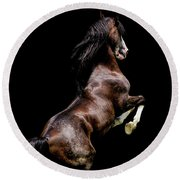 Morgan Stallion - Riley Round Beach Towel