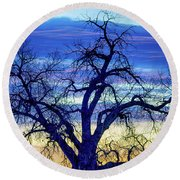 Round Beach Towel featuring the photograph Morning Blues by James BO Insogna