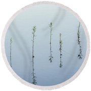 Morning Calm Round Beach Towel