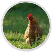 Morning Chicken Round Beach Towel