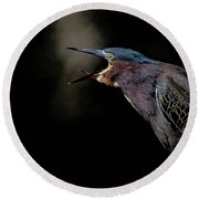 Dawn Chorus Round Beach Towel