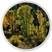 Morning Cottonwoods Round Beach Towel