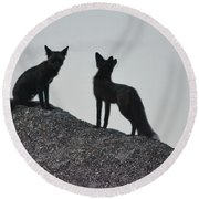 Morning Foxes Round Beach Towel