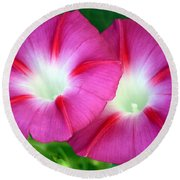Round Beach Towel featuring the photograph Morning Glories by Sheila Brown