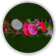 Morning Glory Banner Round Beach Towel