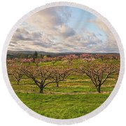 Morning Glory Orchards Round Beach Towel by Angelo Marcialis