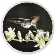 Morning Nectar Flyby  Round Beach Towel