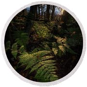 Round Beach Towel featuring the photograph Morning On The Coastal Trail by Rick Berk