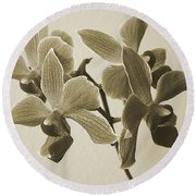 Morning Orchid Round Beach Towel