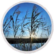 Round Beach Towel featuring the photograph Good Day Sunshine by John Glass