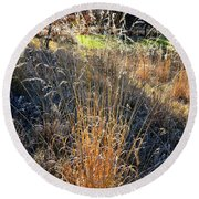 Morning Sun Backlights Fall Grasses In Glacial Park Round Beach Towel