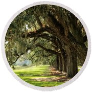 Morning Under The Mossy Oaks Round Beach Towel