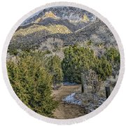 Round Beach Towel featuring the photograph Morning Walk by Alan Toepfer