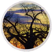 Round Beach Towel featuring the photograph Morning Woods by James BO Insogna