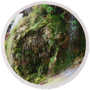 Round Beach Towel featuring the photograph Moss And Waterfalls by Sheila Brown