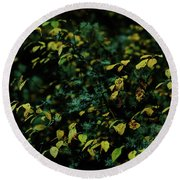 Moss In Colors Round Beach Towel