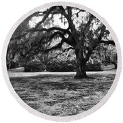 Moss Trees Black And White Round Beach Towel