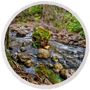 Round Beach Towel featuring the photograph Mossy Boulder by Christopher Holmes