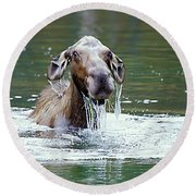 Mossy Moose Round Beach Towel