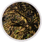 Mossy Trees Round Beach Towel