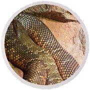 Round Beach Towel featuring the photograph Most Venomous Snake  by Miroslava Jurcik