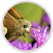Round Beach Towel featuring the photograph Moth On Purple Flower by Meta Gatschenberger