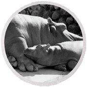 Mother And Baby Hippos Round Beach Towel