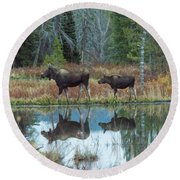 Mother And Baby Moose Reflection Round Beach Towel