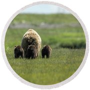 Mother And Three Cubs Round Beach Towel
