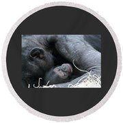 Round Beach Towel featuring the photograph Mother Bonobo And Her Baby by Laurel Talabere