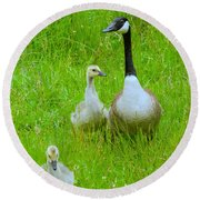 Mother Goose Round Beach Towel by Sean Griffin