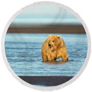 Mother Grizzly Fishing Round Beach Towel