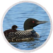 Mother Loon And Her Baby Round Beach Towel