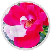 Mother - Natures - Best Round Beach Towel