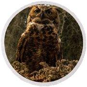 Mother Owl Posing Round Beach Towel by Jane Axman
