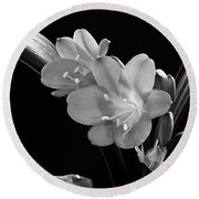 Mother's Clivia Lily Round Beach Towel