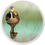 Mottled Duck Reflection Round Beach Towel