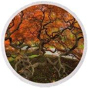 Mount Auburn Cemetery Beautiful Japanese Maple Tree Orange Autumn Colors Branches Round Beach Towel