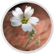 Mountain Beauty Round Beach Towel by RC DeWinter