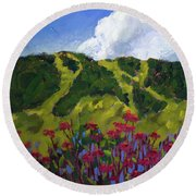 Mountain Blooms Round Beach Towel